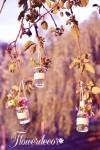 Květinové dekorace na stromech